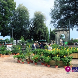 Perugia Flower Show (Winter Edition)
